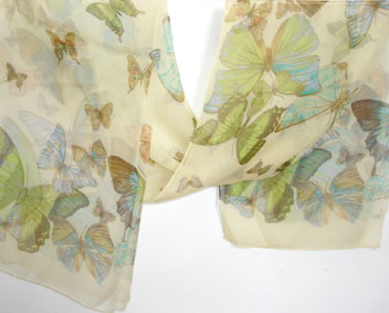 Silk Butterfly Scarve Cream